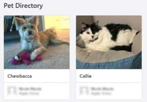 pet directory nextdoor