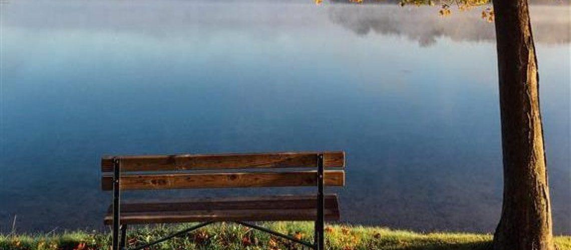 Bench Viewing Lake Thankful during Thanksgiving